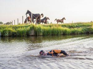 Maarten van der Weijden zwemt met paarden op de achtergrond